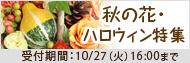 秋の花・ハロウィンギフト特集