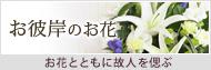 お彼岸の花特集