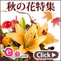 e87.com(千趣会イイハナ) 秋特集
