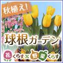 花くらす*野菜くらす