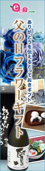 e87.com(千趣会イイハナ)父の日特集