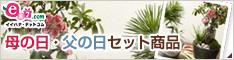 イイハナ・ドットコム e87.com(千趣会イイハナ)母の日特集 母の日・父の日ペアギフト