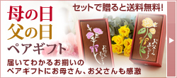 イイハナ・ドットコム e87.com(千趣会イイハナ)母の日特集「厳選フラワーギフト」