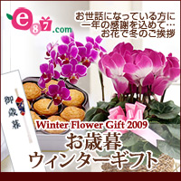 e87.com(千趣会イイハナ)お歳暮・ウィンターギフト