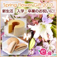 e87.com(千趣会イイハナ)新生活・入園・卒業・春のお祝い