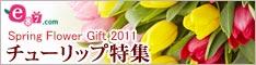 e87.com(千趣会イイハナ)チューリップ特集