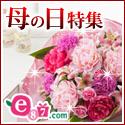 e87.com(株式会社千趣会イイハナ)