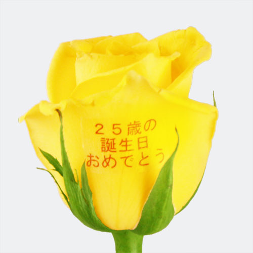 "EXレター・ローズ""Yellow and Orange MIX"" 〜バラに気持ちを託して〜"