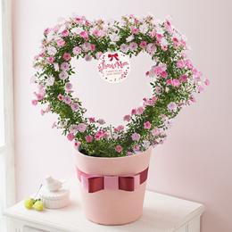 鉢植え「ハート仕立てのツルバラリース~キュートなライトピンク~」
