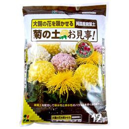 【自宅で楽しむ】菊の土お見事!12L