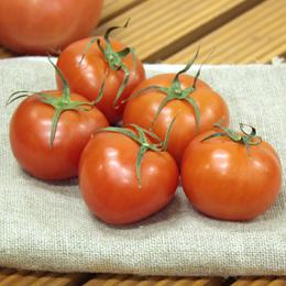 栽培キット「中玉トマト フルティカ&バジル」