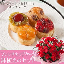 母の日 鉢植えセット「ホシフルーツ フレンチカップケーキ」