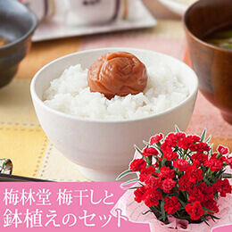 母の日 鉢植えセット「梅林堂 涼音〜SUZUNE〜」