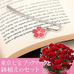 母の日 鉢植えセット「畠山七宝製作所 東京七宝ブックマーク」