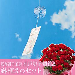 """母の日 鉢植えセット「彩り硝子工房 """"江戸切子"""" 風鈴」"""