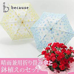 母の日 鉢植えセット「アクアレールフラワーミニ〜晴雨兼用折り畳み傘〜」
