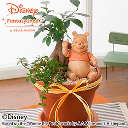 母の日 ディズニー 寄せ植え「プーさんの森」