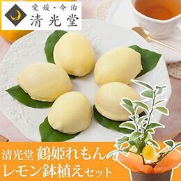 父の日 レモン鉢植えセット「清光堂 鶴姫れもん」