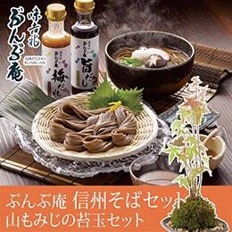 敬老の日 盆栽セット「味吉兆 ぶんぶ庵 信州そばセット」