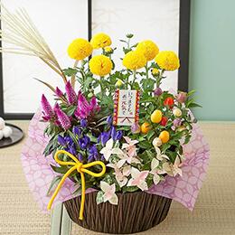 敬老の日 寄せ鉢「秋景の風」