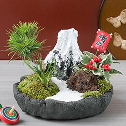 お正月 盆栽「はつゆめ福飾り〜富士山〜」