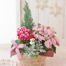 寄せ鉢「スノーマンの贈り物」