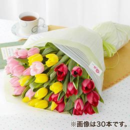 花束「選べるチューリップ花束(MIX)」