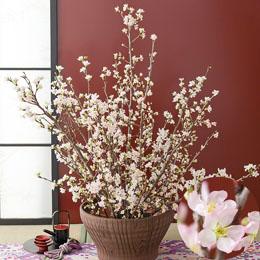 【最速で翌日配送対応】花束「桜美の唄=啓翁桜=」