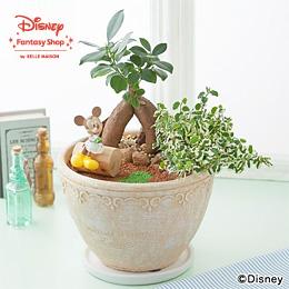 ディズニー 寄せ植え「ハピネス・ガーデン」