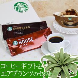 観葉セット「スターバックス コーヒーギフト」