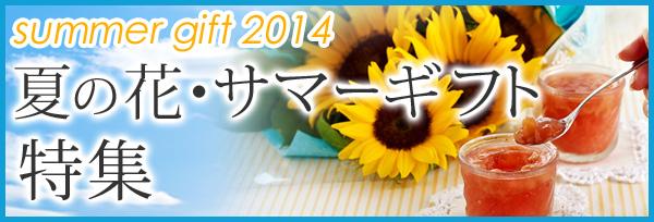 夏の花・サマーギフト