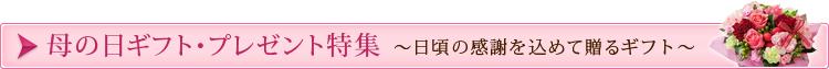 母の日ギフト・プレゼント特集2015 受付期間:5/8(金)11:00まで、お届け期間:5/6~5/10