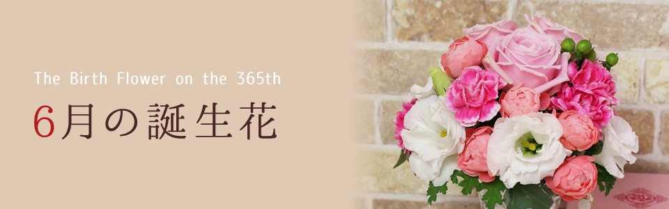 THE BIRTH FLOWER ON THE 365th 6月の花言葉