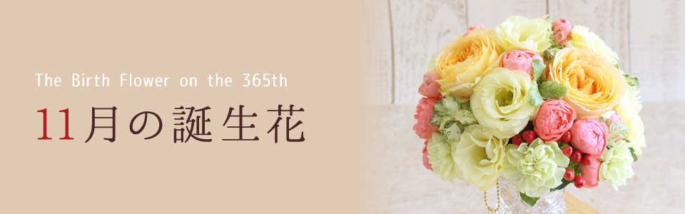THE BIRTH FLOWER ON THE 365th 11月の花言葉