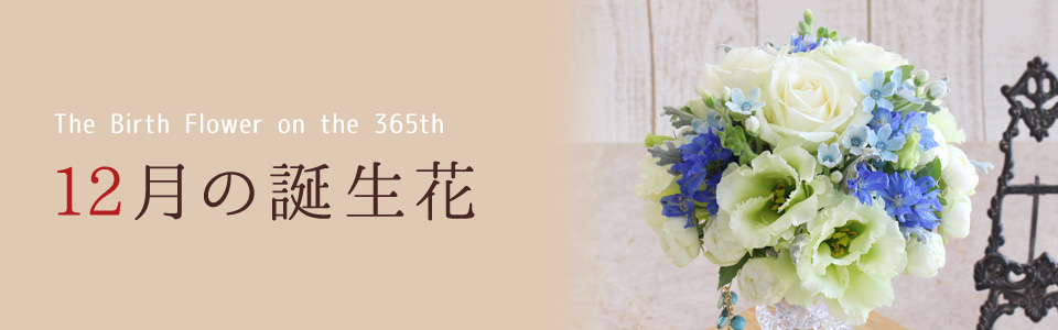 THE BIRTH FLOWER ON THE 365th 12月の花言葉