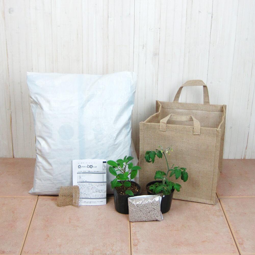 栽培キット「大玉トマト 桃太郎&バジル」