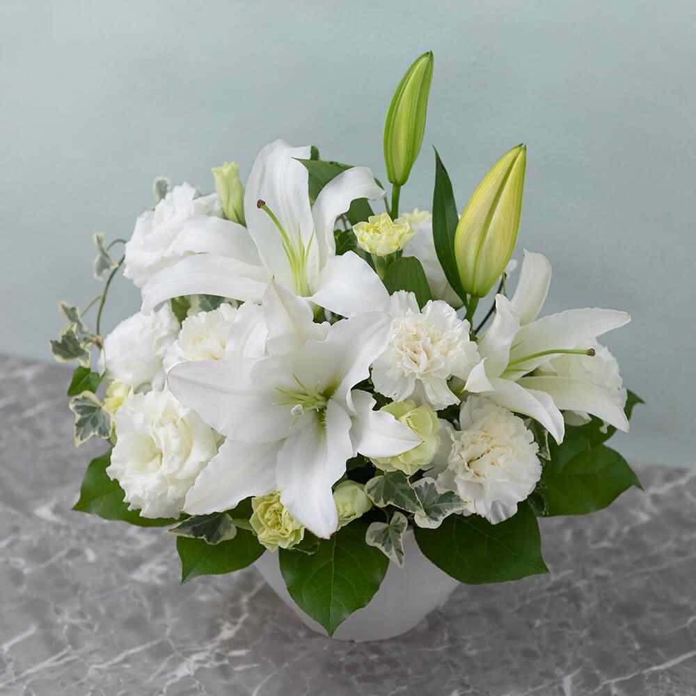 アレンジメント「やすらぎ花(白)」