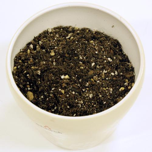 こだわりのプレミアム培養土「花と野菜のごちそう」5リットル