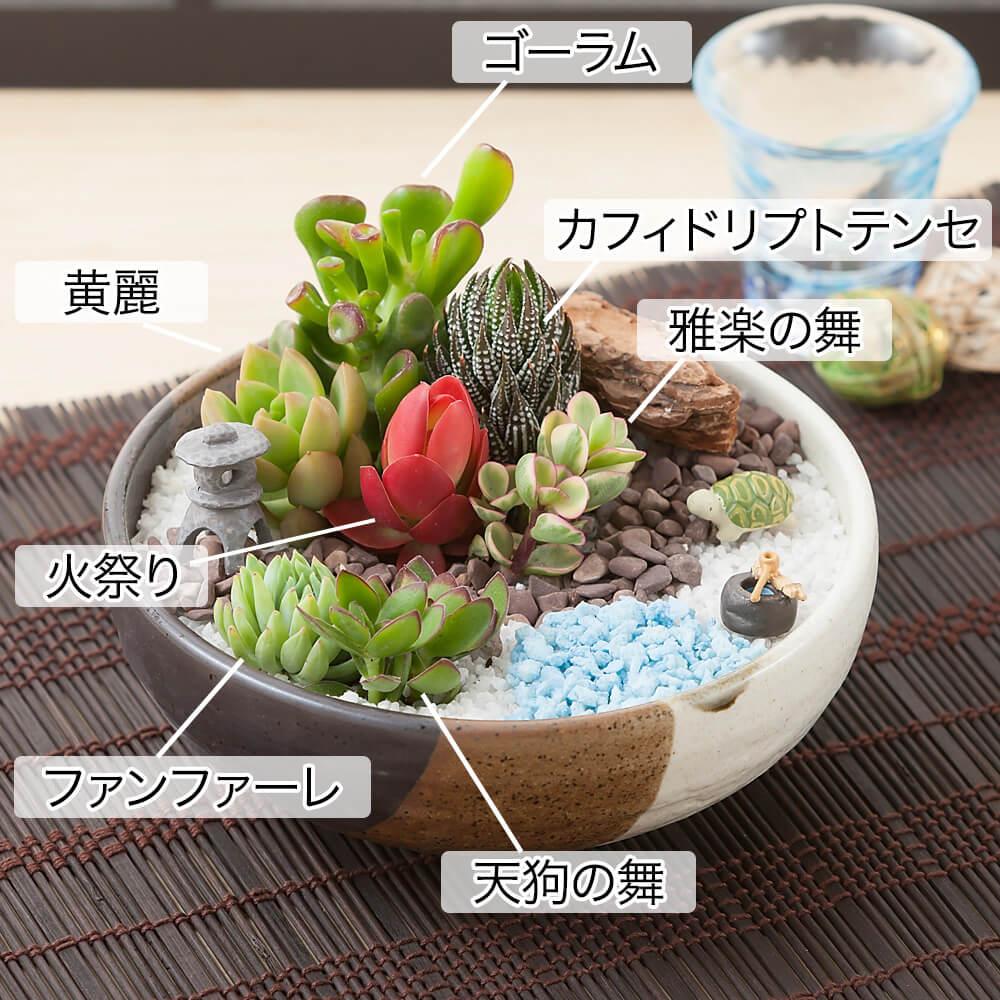 寄せ植え「和みの庭園」