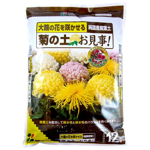 菊の土お見事!12L