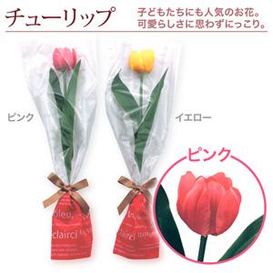1輪のブーケ「チューリップ・ピンク」10本〜