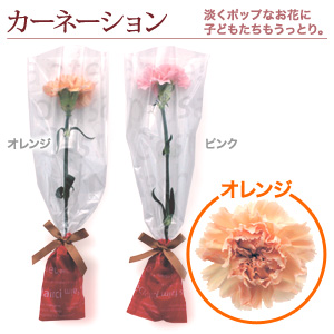 1輪のブーケ「カーネーション・オレンジ」10本〜