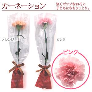 1輪のブーケ「カーネーション・ピンク」10本〜