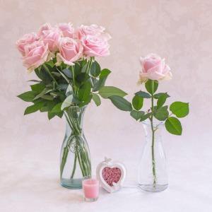 【毎月お届け】新鮮!バラの摘みたて便(6月お届け)