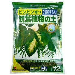 【自宅で楽しむ】観葉植物の土12L