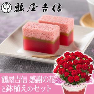 母の日 鉢植えセット「鶴屋吉信 感謝の花」