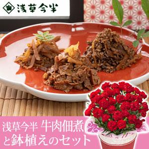 母の日 鉢植えセット「浅草今半 牛肉佃煮木箱詰合せ」