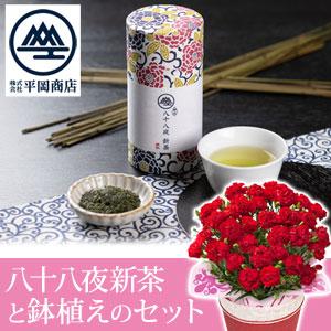 母の日 鉢植えセット「平岡商店 八十八夜新茶」