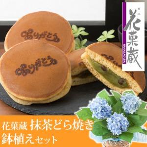 父の日 アジサイ鉢植えセット「花菓蔵 抹茶どら焼き〜ありがとう焼印入り〜」