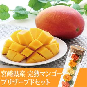 父の日 プリザーブドセット「宮崎県産 完熟マンゴー」